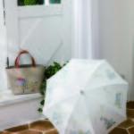 刺繍する日傘 図案のご紹介です